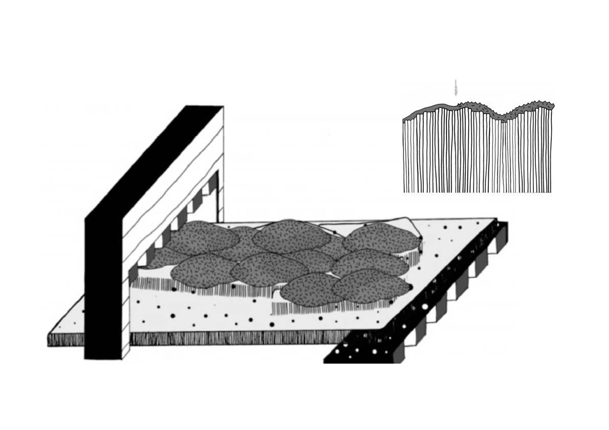 presentation-als-JPEG